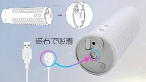 MAX2の充電方法