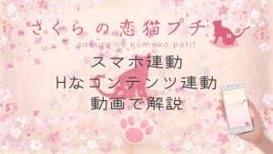 Sakuraneko petit sub Custom Thumbnail