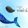 iroha+ YORUKUJIRA(イロハ+ ヨルクジラ)