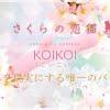 さくらの恋猫 KOIKOI(こいこい)