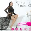 SWAN mini clutch eyecatch image