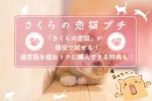 さくらの恋猫プチ アイキャッチ
